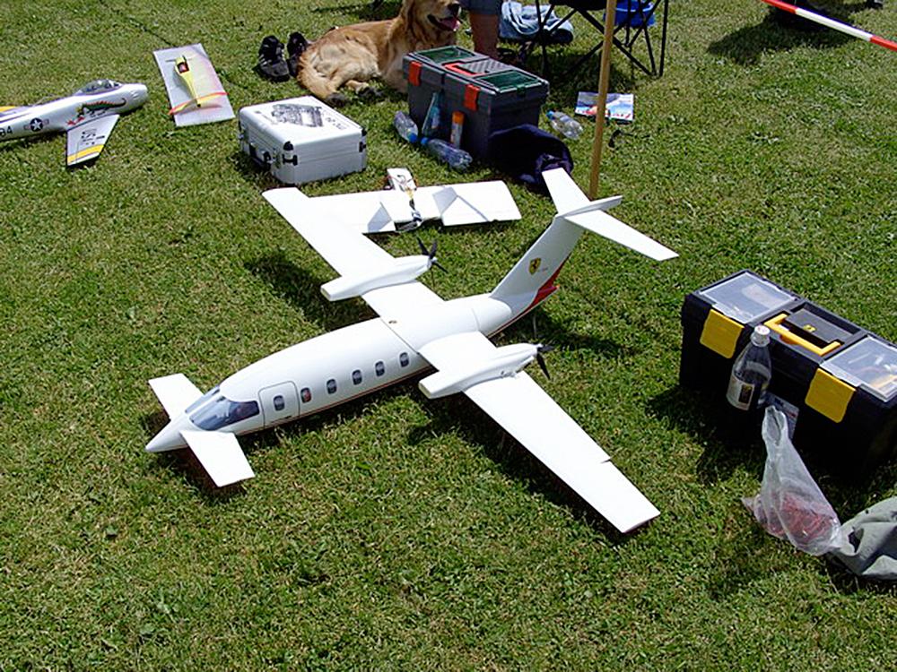Enteflügler-beim-Flugtag-2008